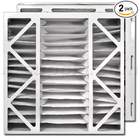 Trane/American Standard PERFECT FIT Air Filter (BAYFTDN21M)